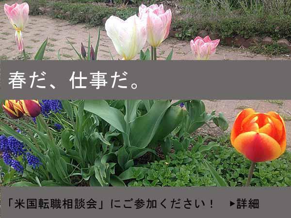 相談会03.2017